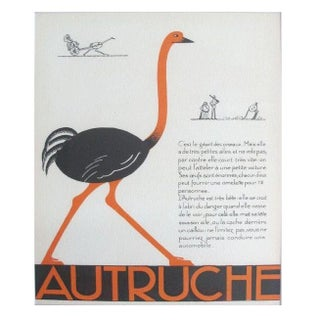 1930s French Art Deco Ostrich Giclee Print