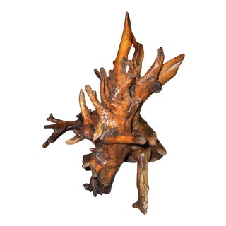 Tree Root Wooden Sculpture