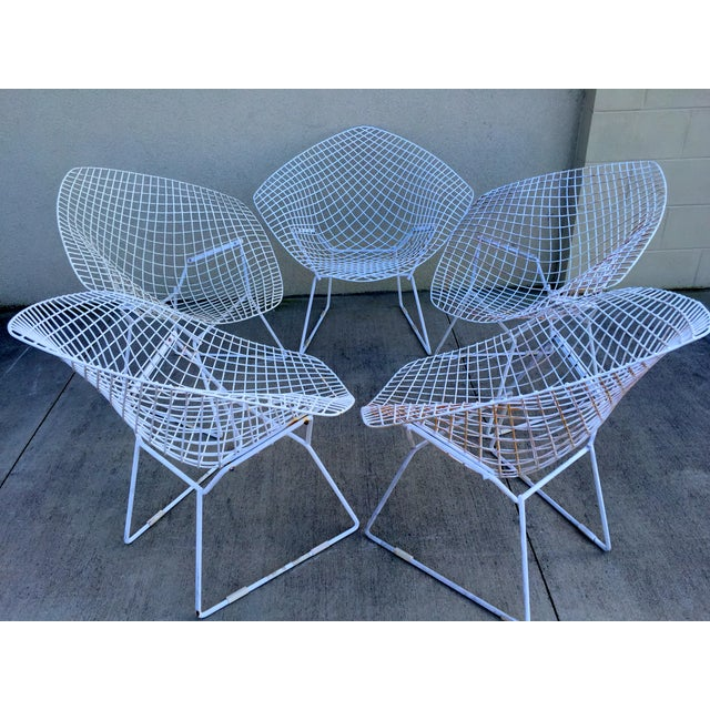 Harry Bertoia Mid-Century White Chairs - Set of 5 - Image 7 of 11