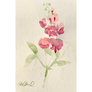 """Soft Focus"" Botanical Watercolor Painting"