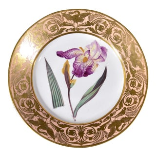 Antique Derby Porcelain Salmon Ground Plate, An Elder Scented Iris, by John Brewer, Circa 1815.
