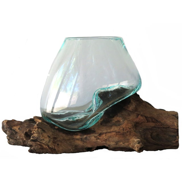 Glass on Teak Driftwood Terrarium - Image 1 of 7