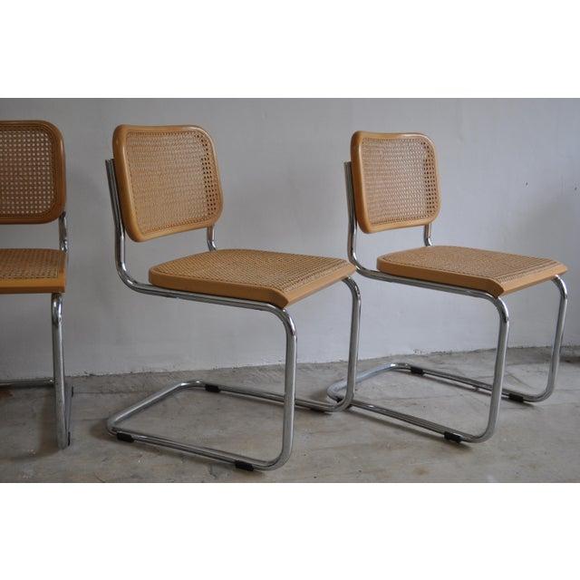 vintage thonet original marcel breuer cesca chairs set of 4 chairish. Black Bedroom Furniture Sets. Home Design Ideas