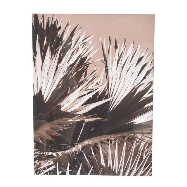 """""""Palm Helix"""" Diptych by Christine Ralphs - Image 1 of 4"""