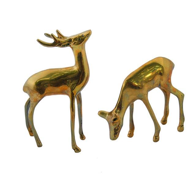 Vintage Brass Deer Figurines - A Pair - Image 1 of 4