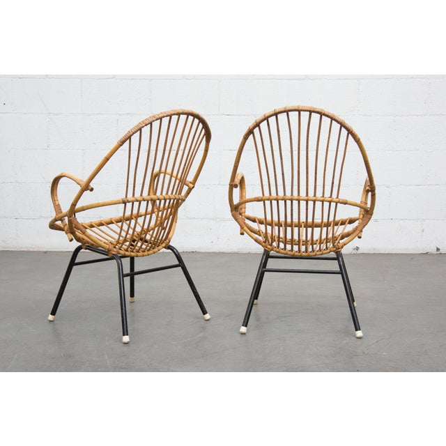 Rohe Noordwolde Bamboo Hoop Chairs - Pair - Image 3 of 8