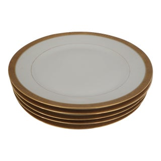 Elegant Gold Rim Dinner Plates S/5