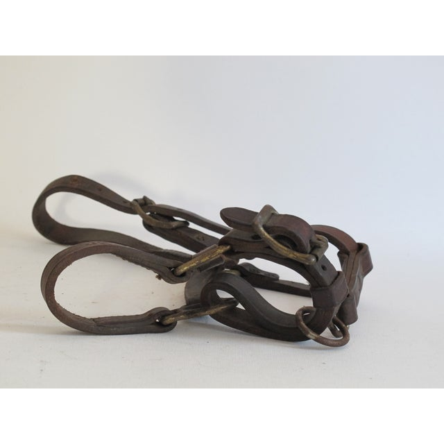 British Leather & Brass Pony Halter - Image 4 of 6