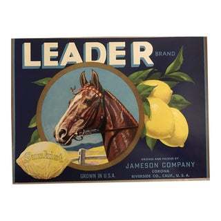 1930s Vintage Sunkist Lemons Horse Fruit Crate Label