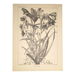 1945 Print Bouquet of Lilies From Bouquets De Style by a Calavas