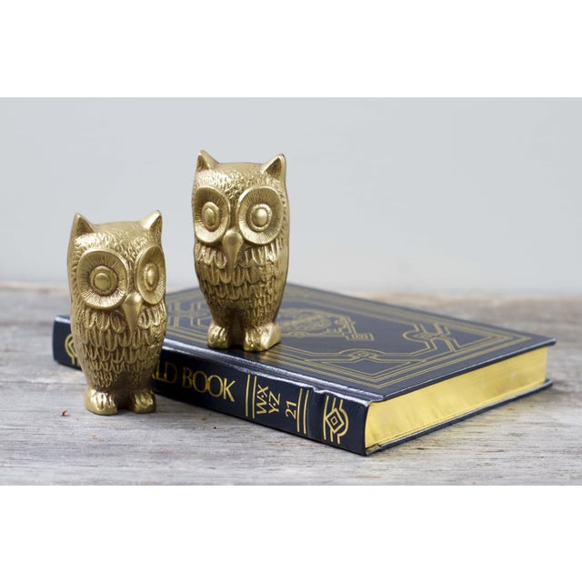 Brass Plated Owl Figurines - A Pair - Image 7 of 7