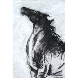 Horse II Drawing by Heidi Lanino