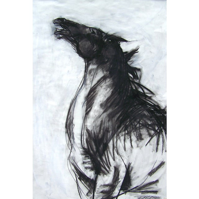 Horse II Drawing by Heidi Lanino - Image 1 of 2