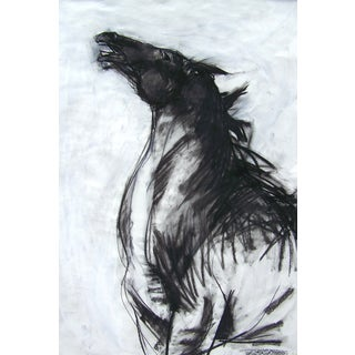 Horse II Drawing by Heidi Lanino
