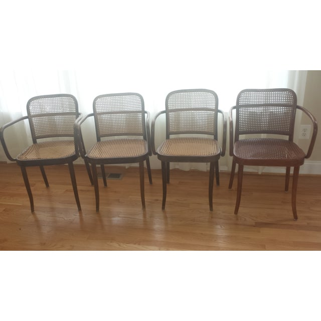 Vintage Stendig Thonet Bentwood Cane Chairs - Set of 4 - Image 2 of 11