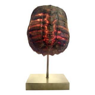 Turtle Shell Table Lamp