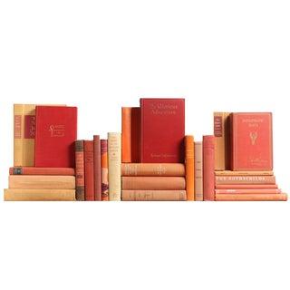 Vintage Salmon World History Books - Set of 25