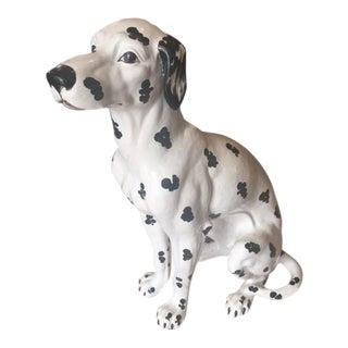 Mid Size Italian Dalmatian
