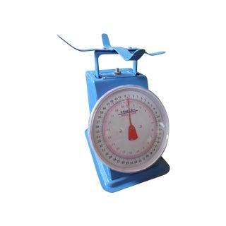 Vintage Blue Metal Scale