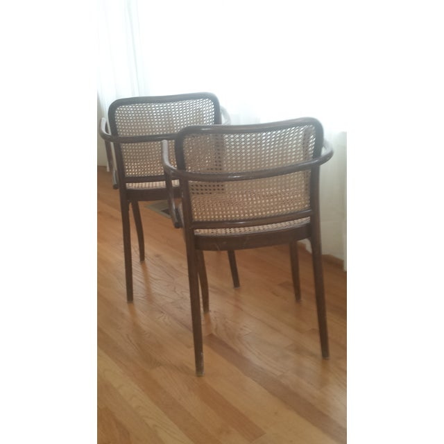 Vintage Stendig Thonet Bentwood Cane Chairs - Set of 4 - Image 8 of 11