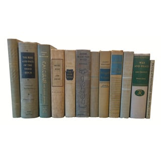 Decorative Vintage Books - Set of 12