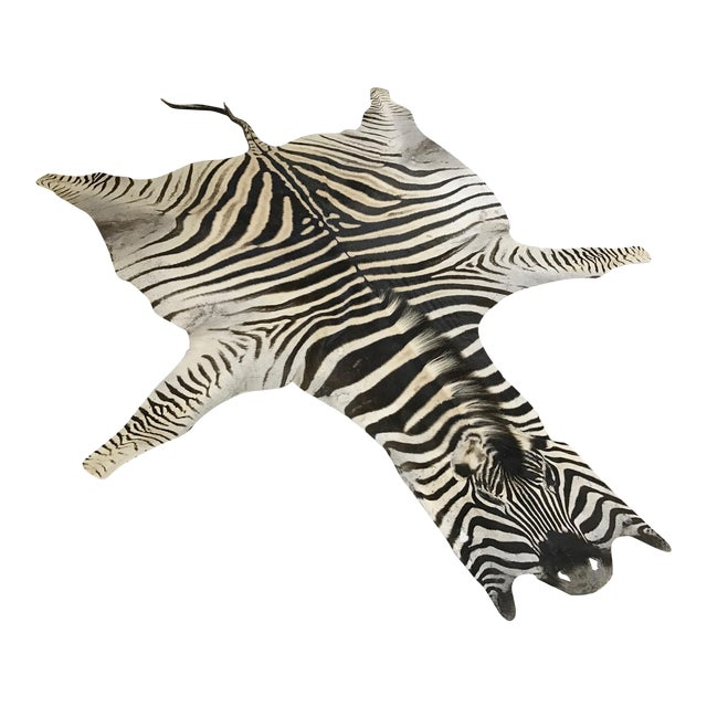 "Natural Zebra Hide Rug - 6' x 7'9"" - Image 1 of 4"