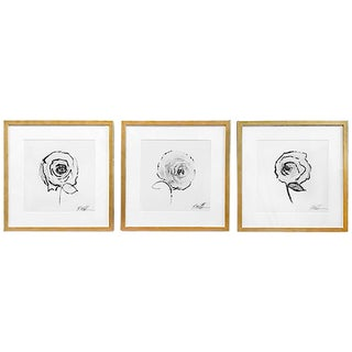 "Flower Series by Robert Robinson - Set of 3 Botanical Framed Prints - 18""w X 18""h Each"