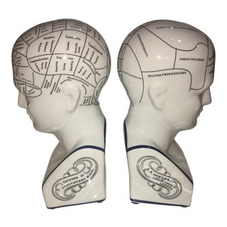 Blue Line Phrenology Head Bookends - A Pair