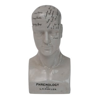 Phrenology Ceramic Head