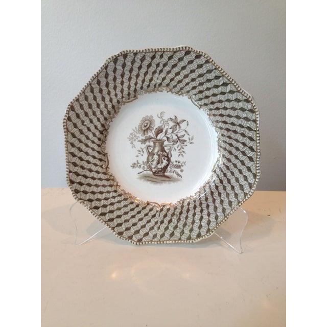 Brown Spode Portland Vase Pattern Luncheon Set - Image 2 of 10