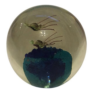 Murano Glass Shrimp Paperweight