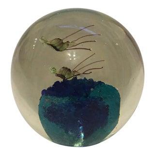 Murano Glass Shrimp Paperweight