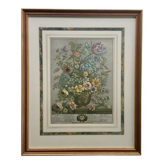 Framed Botanical Print May by Ethan Allen