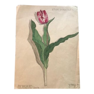 Original Vintage French Tulip Floral Watercolor Painting