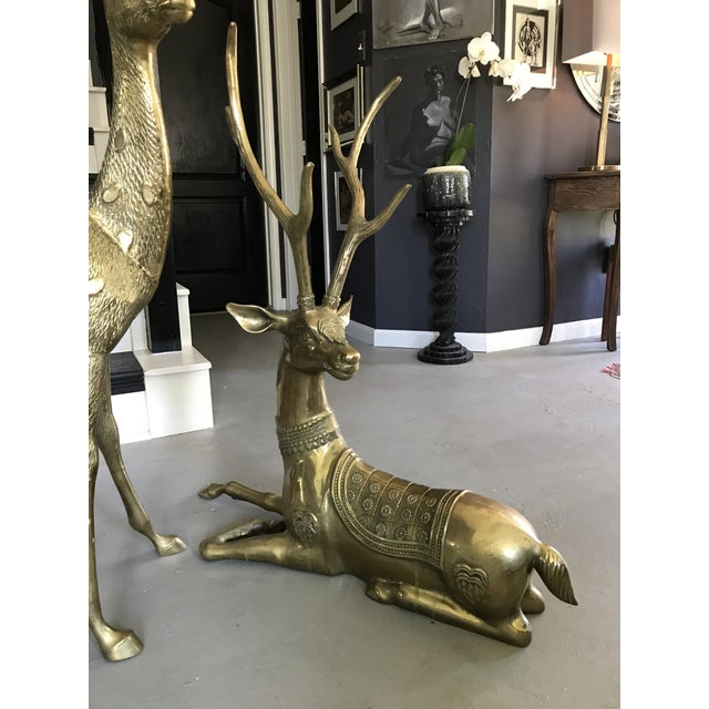 Life-Sized Brass Deer Statues - A Pair - Image 4 of 11