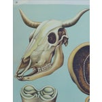 Image of Vintage Anatomy of a Cow Poster