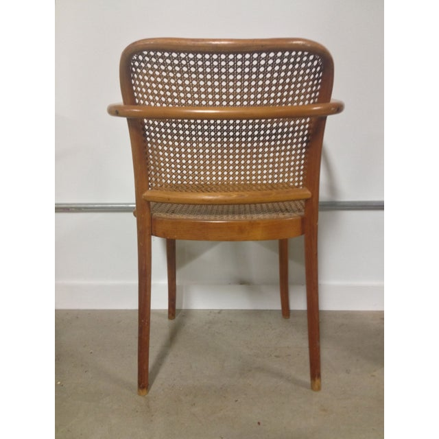 Image of Thonet Mid-Century Bentwood and Cane Armchair