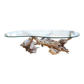 Modernist Natural Drift Wood trunk Coffee Table