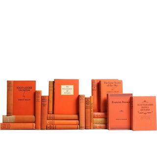 Antique Tangerine Books - Set of 20