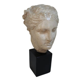 Roman Woman Bust on Stand
