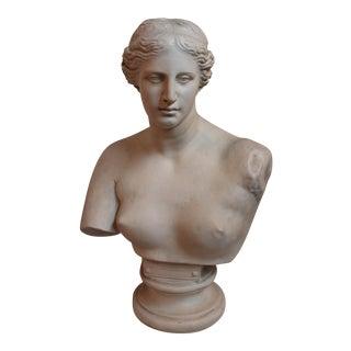 Large Venus De Milo Bust
