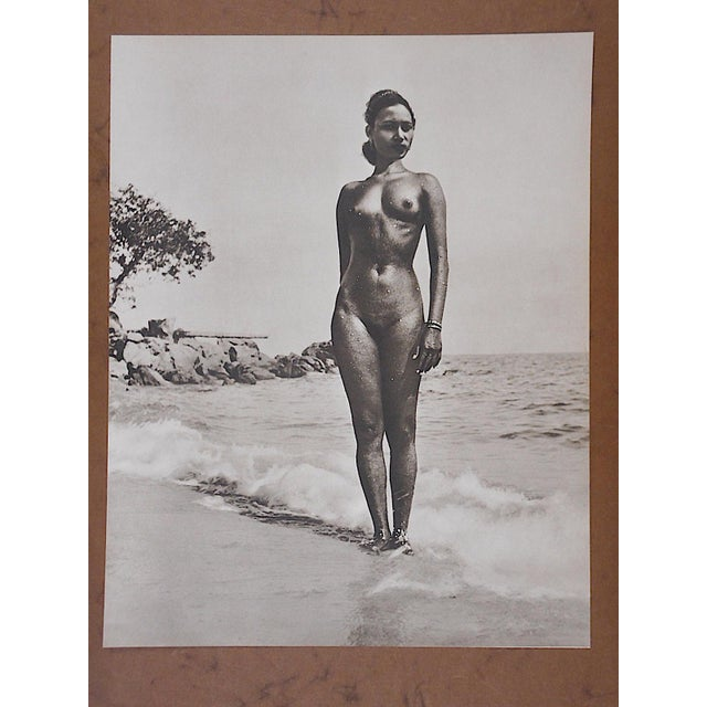 Image of Vintage Silver Gelatin Nude Photograph