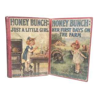 Honey Bunch - Set of 2 Books