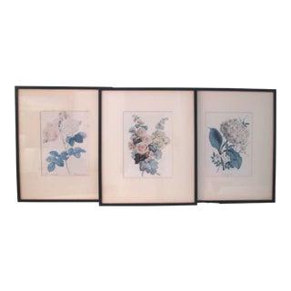 1940s Framed Botanical Prints - Set of 3