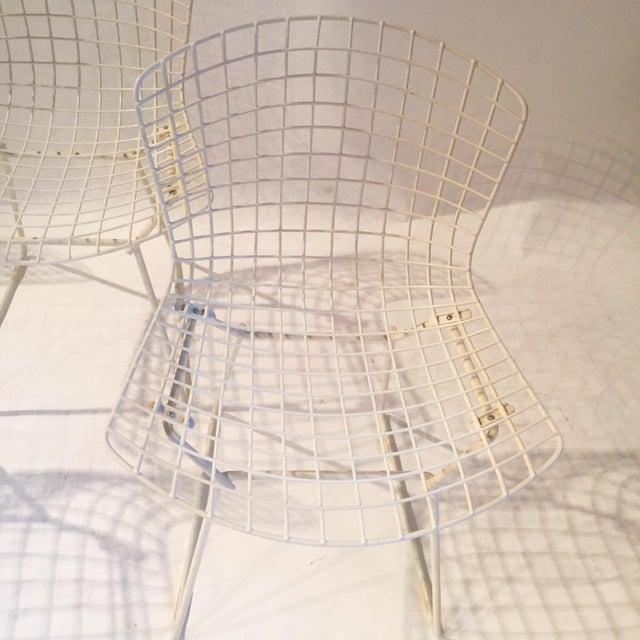 Image of Original Bertoia Dining Chairs - Set of 4