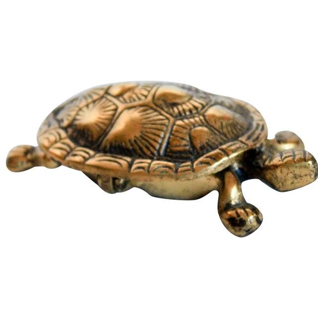 Turtle Trinket Box - Image 1 of 5