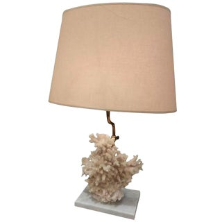 Single Table Lamp Featuring A Specimen Of Coral, Belgium circa 1970