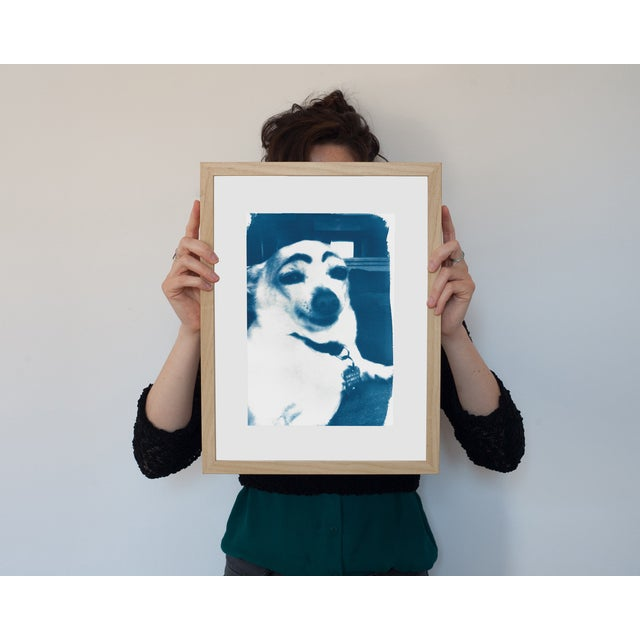 Limited Edition Cyanotype Print- Dog With Eyebrows Meme - Image 2 of 4