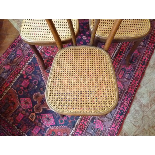Vintage Bentwood and Cane Cafe Dining Chairs - Set of 6 - Image 3 of 10