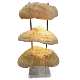 3-Tier Coral & Lucite Table Lamp